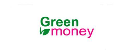 Микрозаймы в компании Green Money